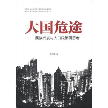 大国危途:民族兴衰与人口政策再思考 pdf epub mobi txt 下载