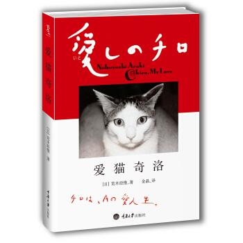 爱猫奇洛 pdf epub mobi txt 下载