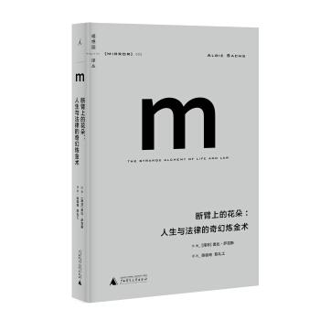 理想国译丛003:断臂上的花朵:人生与法律的奇幻炼金术 pdf epub mobi txt 下载