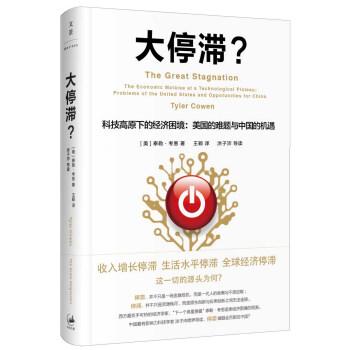 大停滞 科技高原下的经济困境 美国的难题与中国的机遇 pdf epub mobi txt下载
